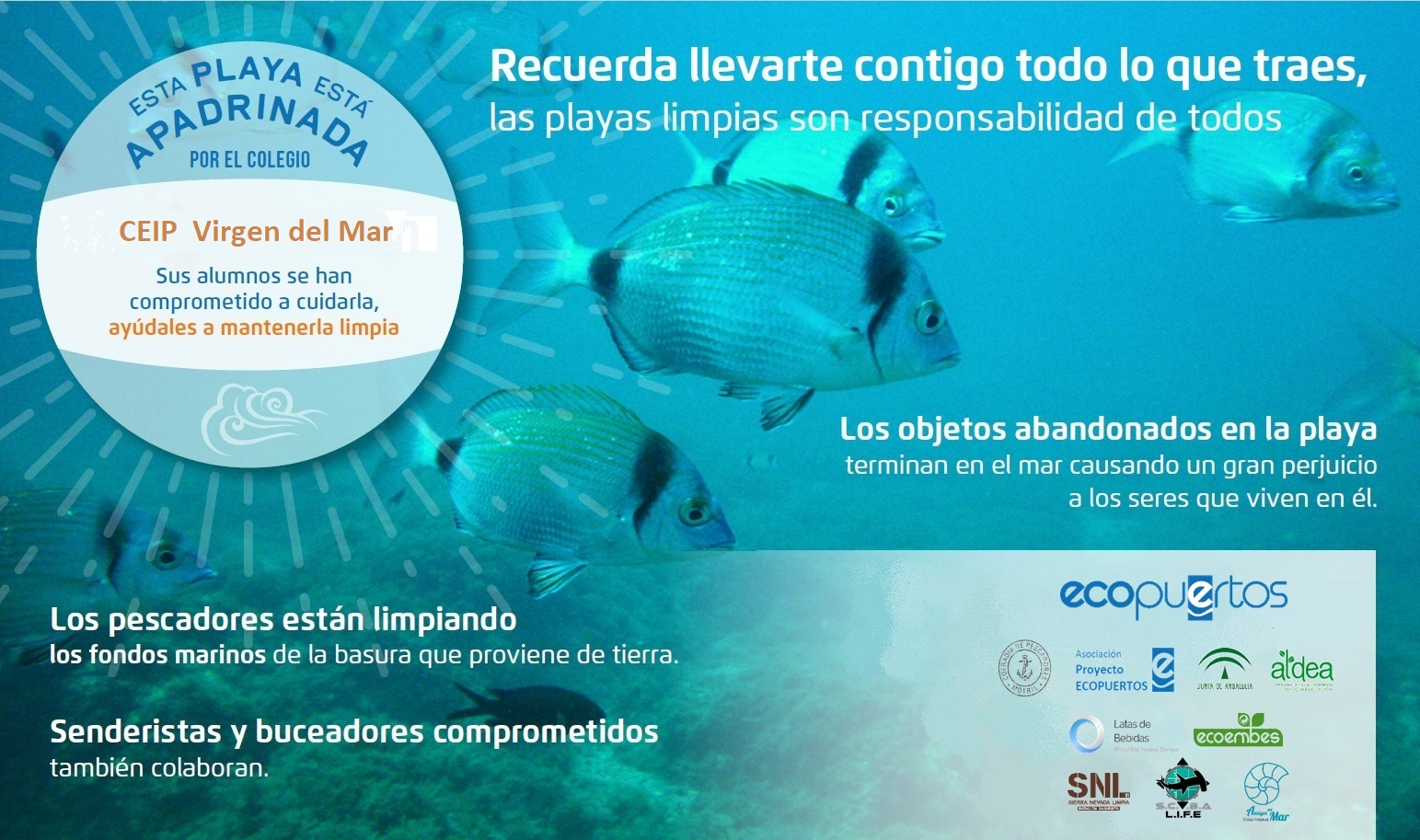 images/VIRGEN_DEL_MAR_Cartel_Playas_DEFINITIVO_2200_x_1300_.jpg