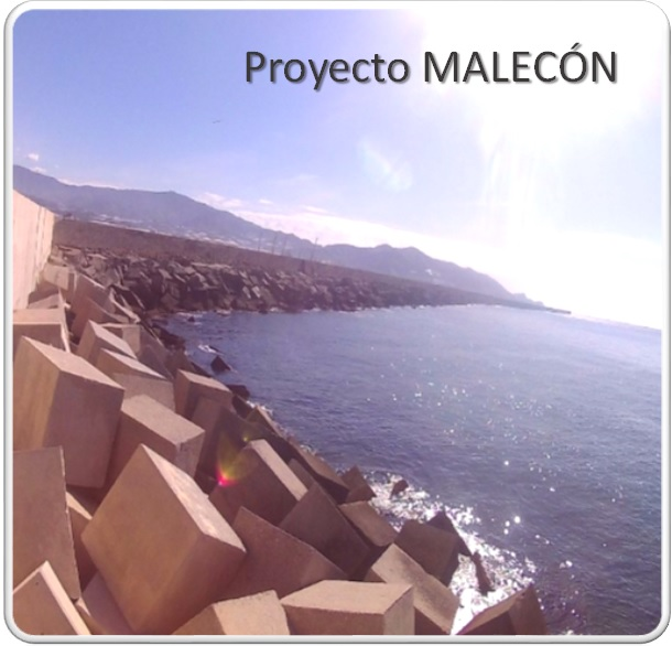 Proyecto MALECON